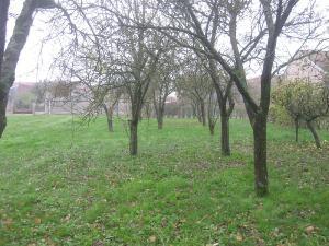 Terrain a batir a vendre Vanault-les-Dames 51340 Marne 1800 m2  54000 euros