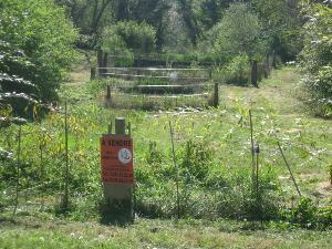 Terrains de loisirs bois etangs a vendre Plerguer 35540 Ille-et-Vilaine 1550 m2  10600 euros