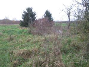Terrains de loisirs bois etangs a vendre Perthes 52100 Haute-Marne 2689 m2  5800 euros
