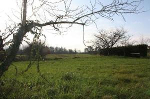 Terrain a batir a vendre Montbellet 71260 Saone-et-Loire 1064 m2  52872 euros