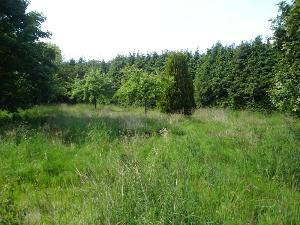 Terrain a batir a vendre Romagné 35133 Ille-et-Vilaine 2884 m2  90467 euros