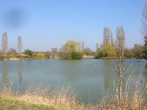 Maison a vendre Pruniers 36120 Indre 4 pièces 227972 euros