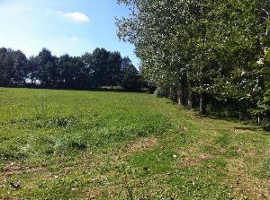 Terrains de loisirs bois etangs a vendre Argenton-l'Église 79290 Deux-Sevres 10280 m2  31800 euros