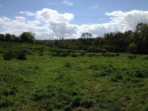 Terrain a batir a vendre Dozulé 14430 Calvados 665 m2  47594 euros