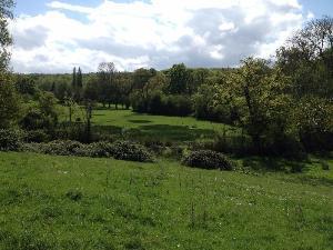 Terrain a batir a vendre Dozulé 14430 Calvados 706 m2  56992 euros