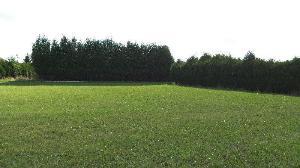 Terrain a batir a vendre Nogent-sur-Aube 10240 Aube 2673 m2  42750 euros