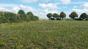 Terrain a batir a vendre Champfleury 10700 Aube 1925 m2  24620 euros