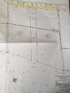 Terrain a batir a vendre Creully 14480 Calvados 12000 m2  38160 euros
