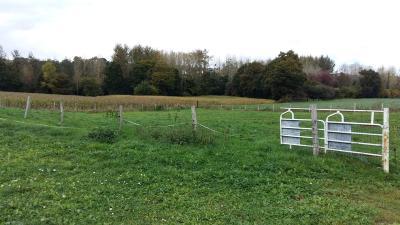 Terrains de loisirs bois etangs a vendre Dolo 22270 Cotes-d'Armor 5687 m2  26500 euros