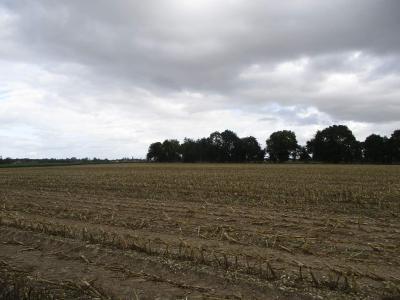 Terrain a batir a vendre Saint-Mards-de-Blacarville 27500 Eure 1500 m2  55590 euros