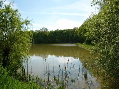 Terrains de loisirs bois etangs a vendre Marpiré 35220 Ille-et-Vilaine 10700 m2  40280 euros