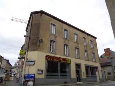 Immeuble de rapport a vendre Argentré-du-Plessis 35370 Ille-et-Vilaine 350 m2  230300 euros
