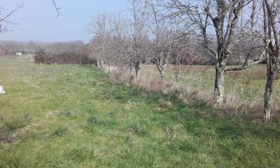 Terrain a batir a vendre Le Pêchereau 36200 Indre 1389 m2  28620 euros