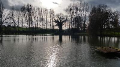 Terrains de loisirs bois etangs a vendre Saint-Gervais-les-Trois-Clochers 86230 Vienne 21200 m2  83800 euros