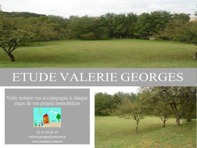 Terrain a batir a vendre Sainte-Maure-de-Touraine 37800 Indre-et-Loire 1250 m2  42400 euros