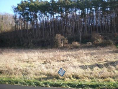 Terrain a batir a vendre Seigy 41110 Loir-et-Cher 3805 m2  29680 euros