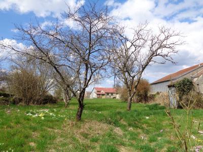 Maison a vendre Chatoillenot 52190 Haute-Marne 90 m2 3 pièces 86400 euros