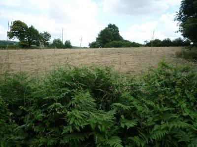 Bien agricole a vendre Chailland 53420 Mayenne  4134 euros