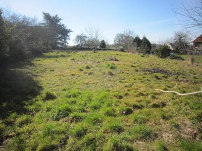 Terrain a batir a vendre Champgenéteux 53160 Mayenne 964 m2  15838 euros