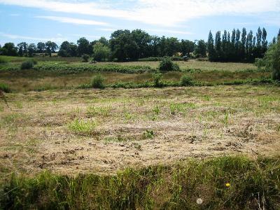Terrain a batir a vendre Ploërdut 56160 Morbihan 1452 m2  24518 euros