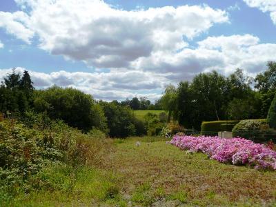 Terrain a batir a vendre Ploërdut 56160 Morbihan 1061 m2  13572 euros