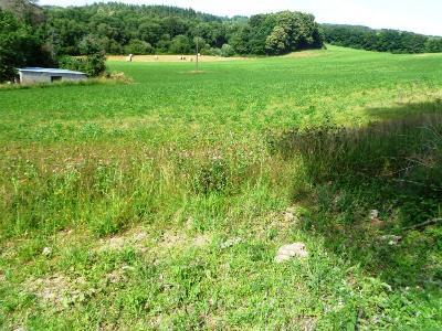 Terrain a batir a vendre Ploërdut 56160 Morbihan 1042 m2  13329 euros