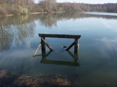 Terrains de loisirs bois etangs a vendre Ambiévillers 70210 Haute-Saone 44700 m2  155852 euros
