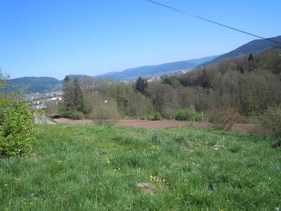 Terrain a batir a vendre Saint-Nabord 88200 Vosges 1232 m2  25970 euros