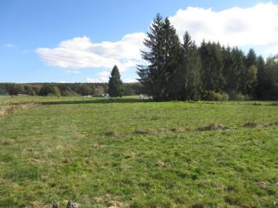 Terrain a batir a vendre Le Val-d'Ajol 88340 Vosges 3470 m2  35000 euros