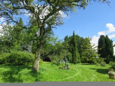 Maison a vendre Langé 36600 Indre 90 m2 3 pièces 97500 euros