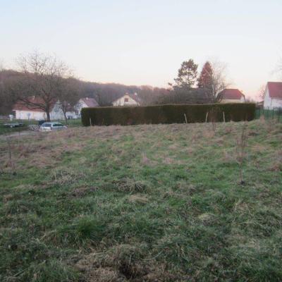 Terrain a batir a vendre Berthelange 25410 Doubs 888 m2  58000 euros