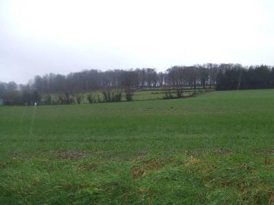 terrain boise a vendre calvados