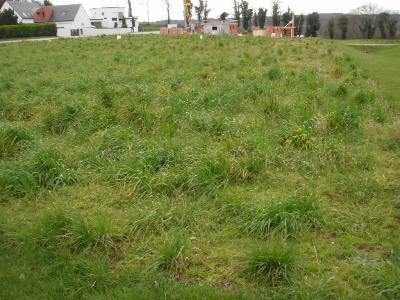 Terrain a batir a vendre Pontivy 56300 Morbihan  69 euros