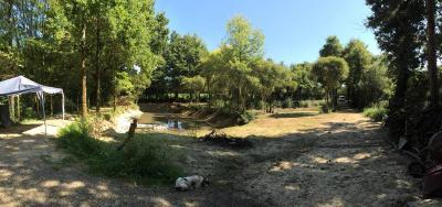 Terrains de loisirs bois etangs a vendre Martinet 85150 Vendee 2910 m2  18000 euros
