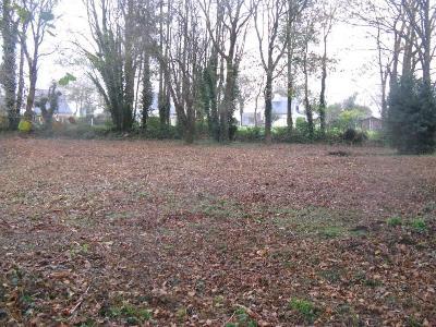 Terrain a batir a vendre Berric 56230 Morbihan 1457 m2  68780 euros
