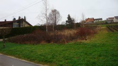Terrain a batir a vendre Montholier 39800 Jura 1431 m2  37100 euros