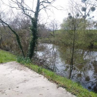 Terrains de loisirs bois etangs a vendre Crevin 35320 Ille-et-Vilaine  45000 euros