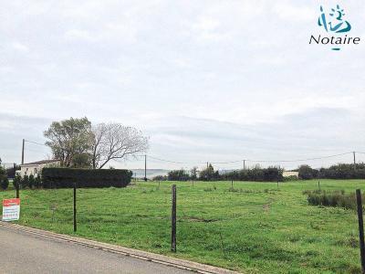 Terrain a batir a vendre Ferques 62250 Pas-de-Calais 800 m2  55000 euros