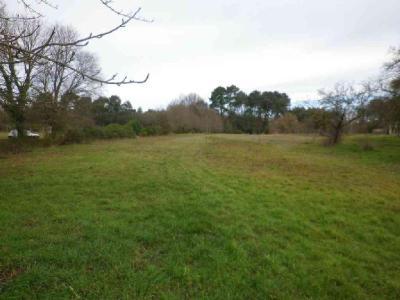 Terrain a batir a vendre Vignoux-sur-Barangeon 18500 Cher 1775 m2  37100 euros