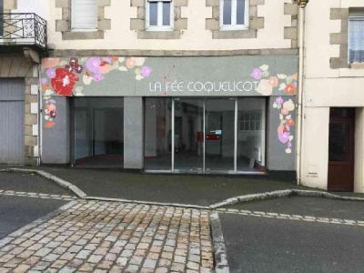 Location divers Plestin-les-Grèves 22310 Cotes-d'Armor  500 euros