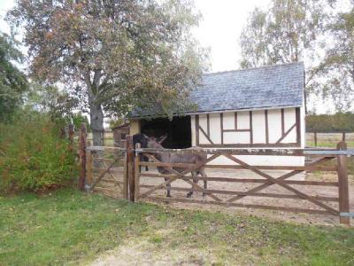 Maison a vendre Fontaine-Raoul 41270 Loir-et-Cher 165 m2 8 pièces 250000 euros