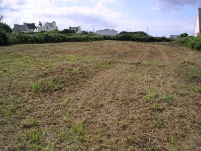 Terrain a batir a vendre Plouhinec 29780 Finistere 3123 m2  73472 euros