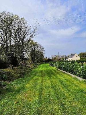 Terrain a batir a vendre Plounéour-Ménez 29410 Finistere 1500 m2  37100 euros