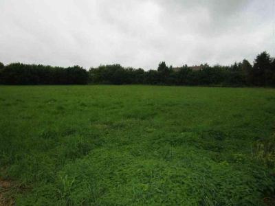 Terrain a batir a vendre Nuisement-sur-Coole 51240 Marne 1500 m2  63100 euros