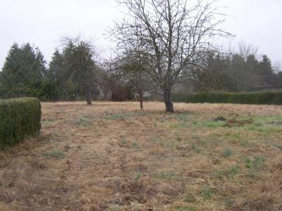 Terrain a batir a vendre Chantrigné 53300 Mayenne 1600 m2  16960 euros