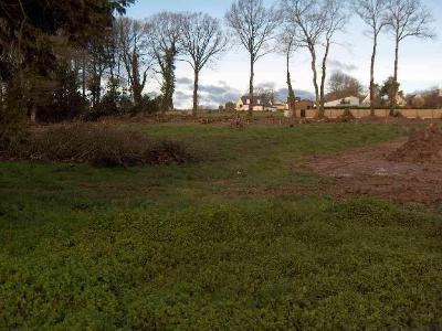 Terrain a batir a vendre Ruffiac 56140 Morbihan 1906 m2  55962 euros