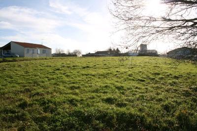Terrain a batir a vendre Falleron 85670 Vendee 1460 m2  73470 euros