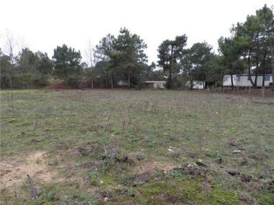 Terrain a batir a vendre Saint-Jean-de-Monts 85160 Vendee 1214 m2  94072 euros
