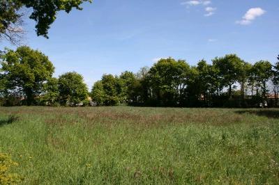 Terrain a batir a vendre Martinet 85150 Vendee 3613 m2  86860 euros