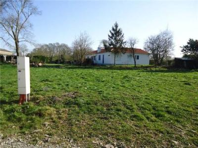 Terrain a batir a vendre Châteauneuf 85710 Vendee 693 m2  45000 euros
